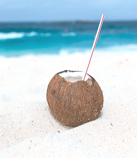 coconut health benefits